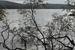 Lake Windermere Cumbria Uk